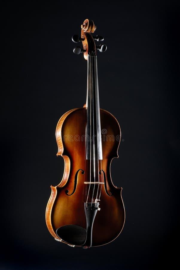 Violine Motif#2 stockbild