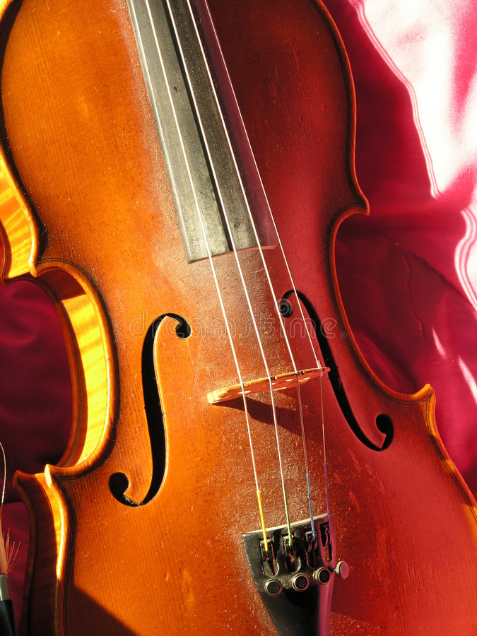 Violine oder Geige lizenzfreie stockfotografie