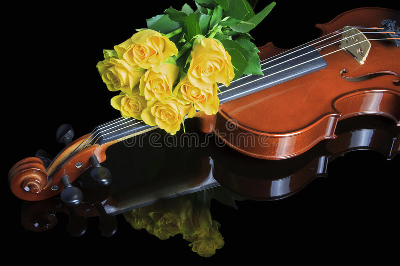 Violine and roses. A violine laying on a reflecting black background covered with a bunch of yellow roses stock images