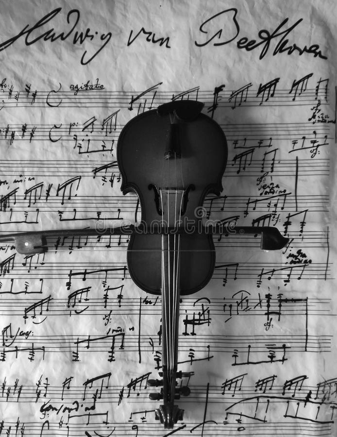 Violine Schwarzweiss stockfoto