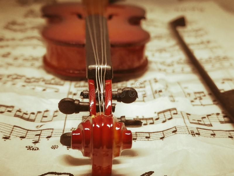 Violine. Stringet music instrument violin music stock photography
