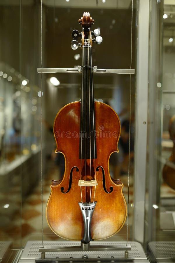Violine in Uffizi-Galerie lizenzfreies stockbild
