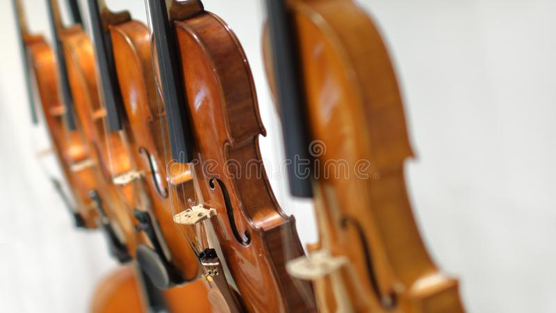 Violinen auf weißem Hintergrund lizenzfreie stockfotografie