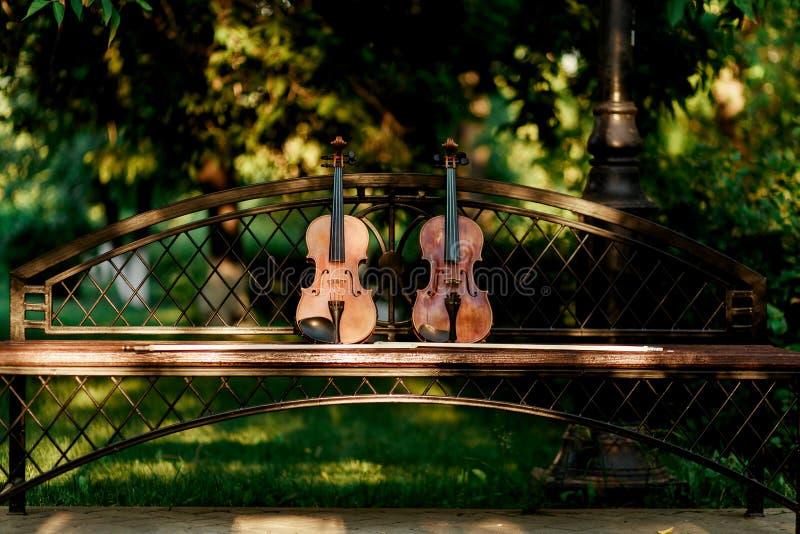 Violinenmusikinstrument des Orchesters Violinen im Park auf der Bank lizenzfreie stockfotos