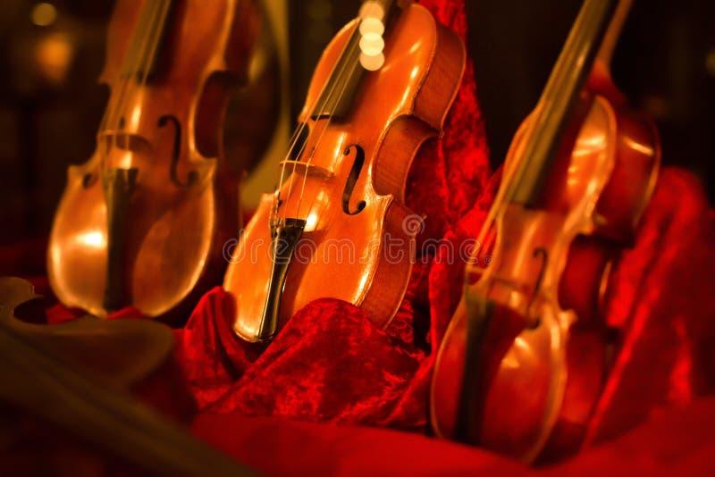 Violines de los instrumentos de música clásica en el terciopelo rojo iluminado por las luces de las lámparas imágenes de archivo libres de regalías