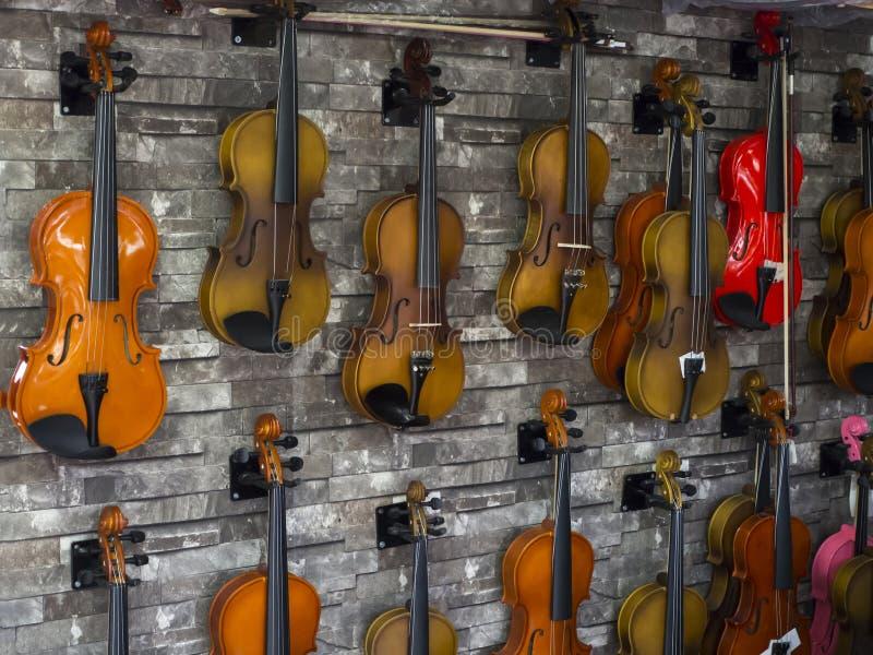Violines que se colocan en la pared en una tienda de la música muchos violines de madera fotografía de archivo