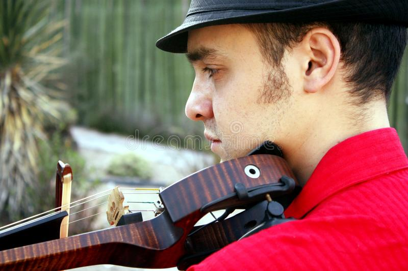 Violinist stockfoto