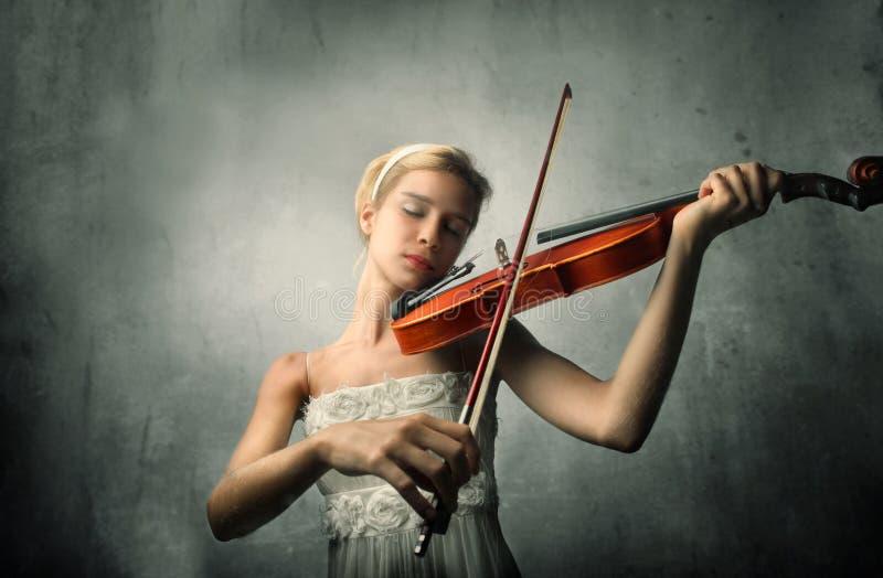 Violinista imagem de stock royalty free