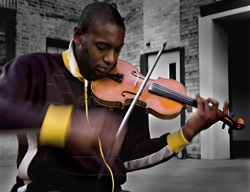 Violinista fotografia de stock royalty free
