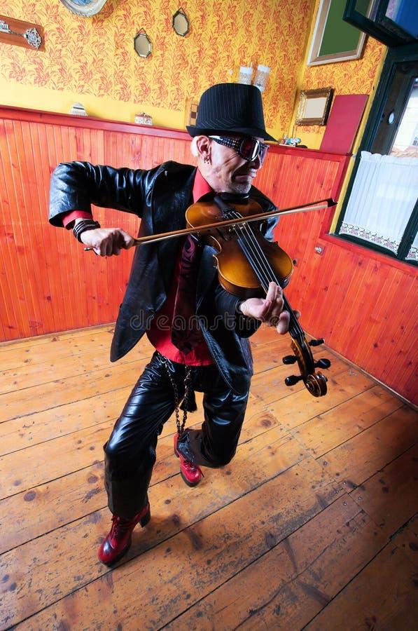 Violinista imagem de stock