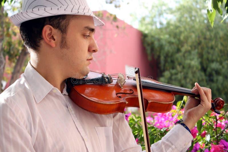 Violinista immagine stock