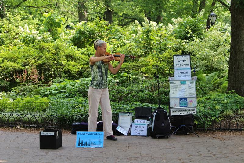 Violinista no Central Park imagens de stock royalty free