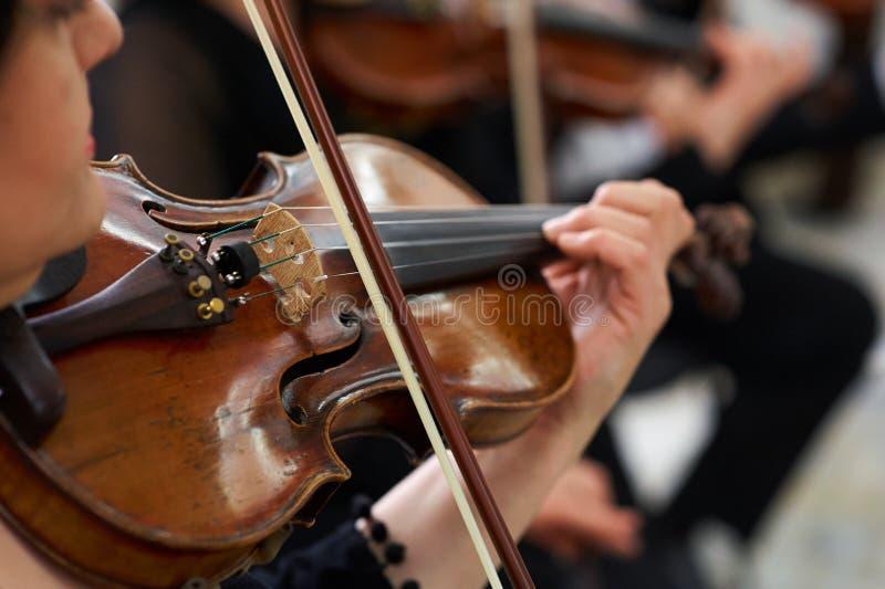 Violinista Playing Classical Violin das mulheres fotografia de stock