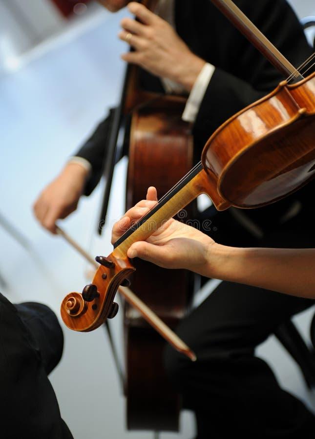Violinistas fotografía de archivo libre de regalías