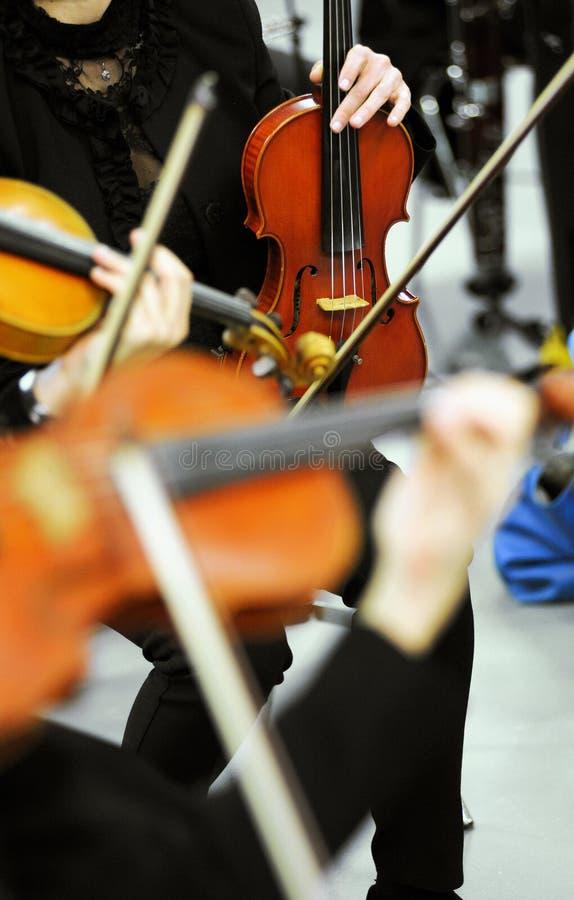 Violinistas en un decreto o un concierto de la orquesta foto de archivo
