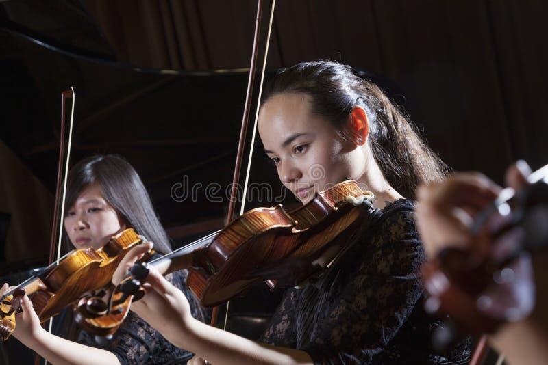 Violinistas que jogam durante um desempenho, um principal e uns ombros imagens de stock