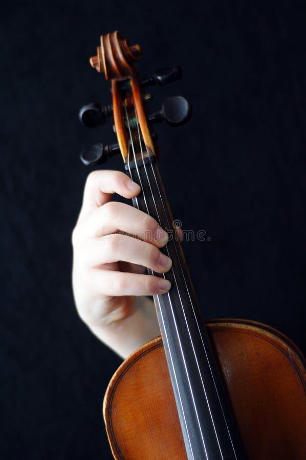 Violinisten stockfotografie