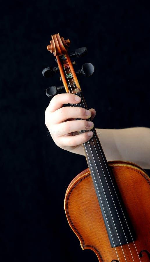 violinister royaltyfri fotografi