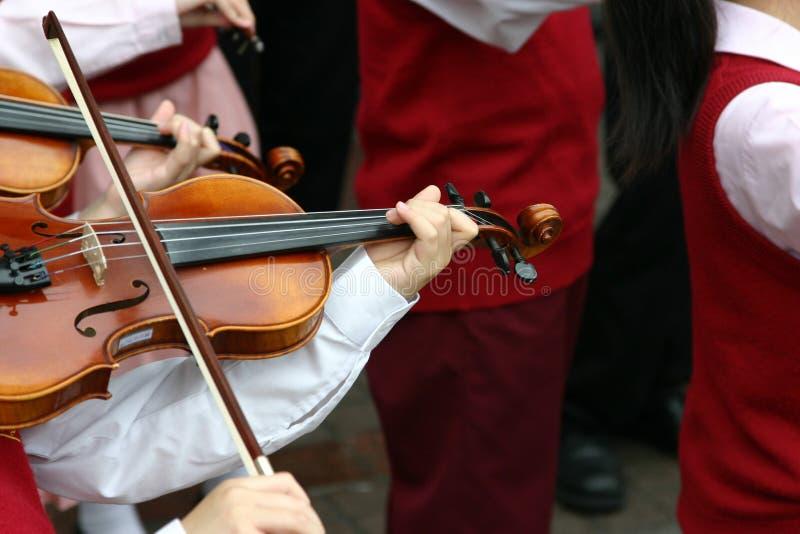 violinister arkivfoton