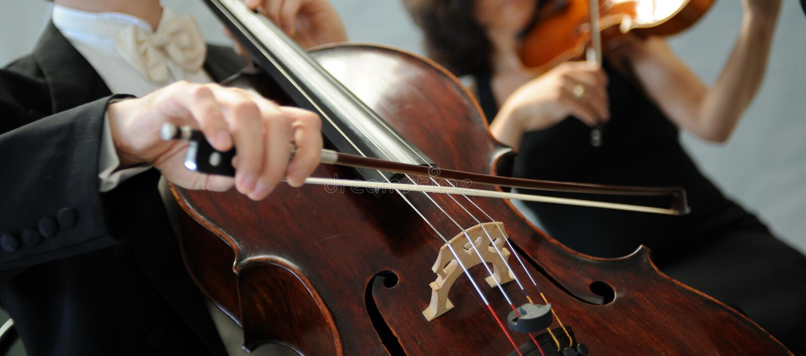 Violinists royalty free stock photography