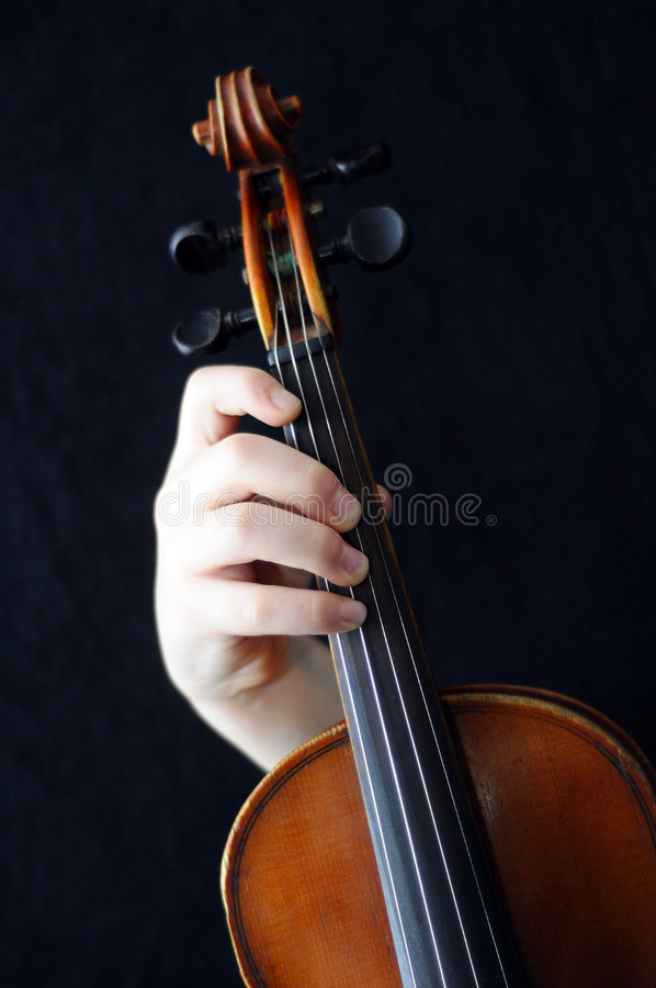 Download Violinists stock photo. Image of fiddler, wooden, melody - 3885682