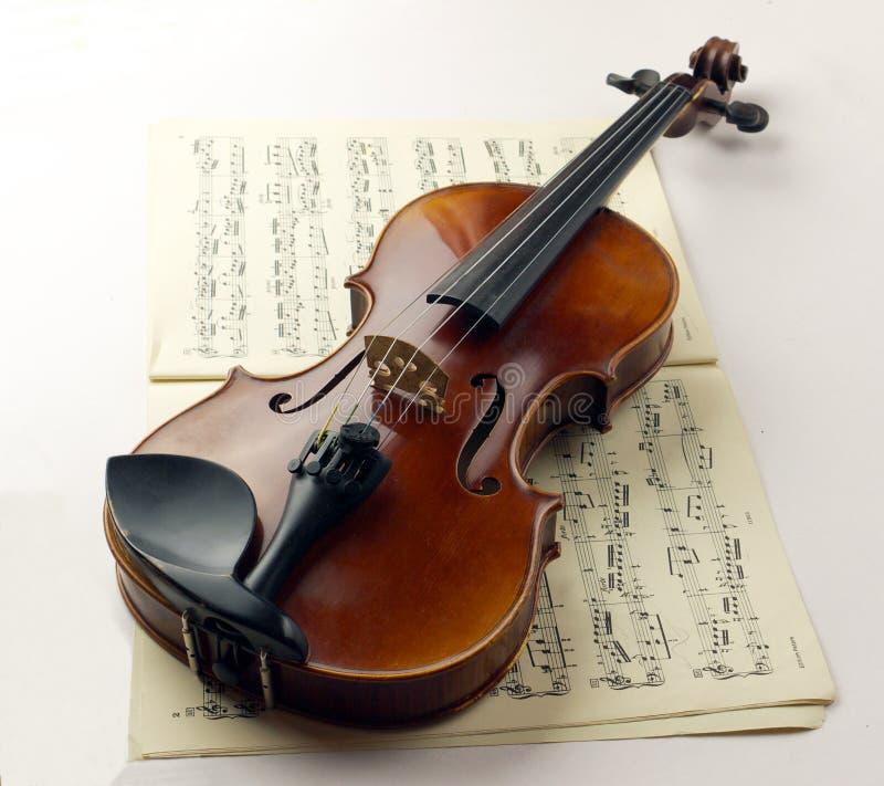 Violino foto de stock