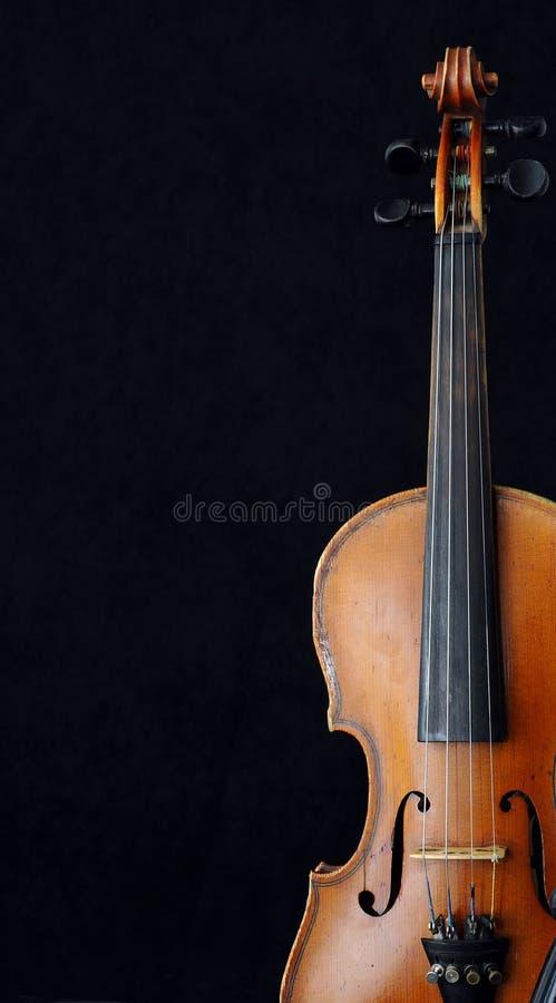 Download Violino fotografia stock. Immagine di violinist, symphony - 3886134