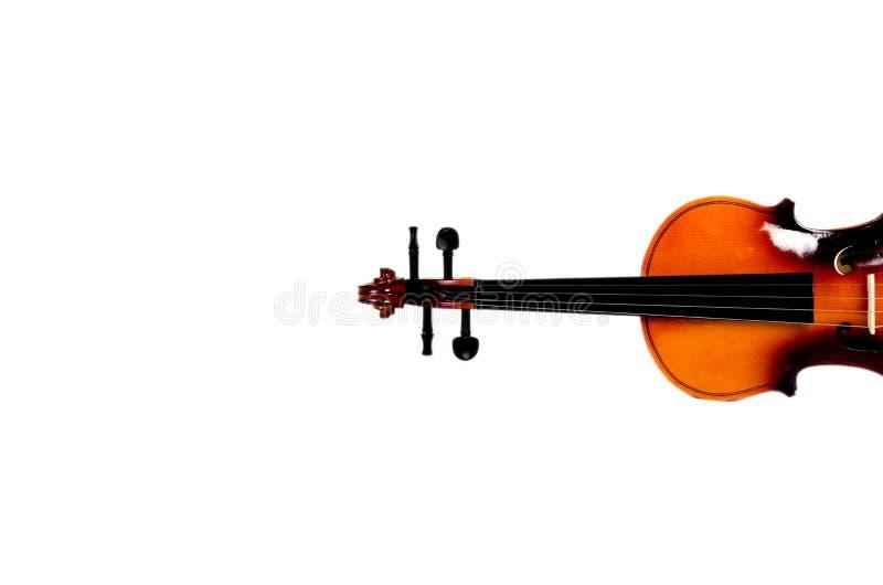 Violino brilhante fotografia de stock