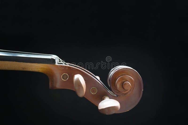 Violino capo immagini stock libere da diritti
