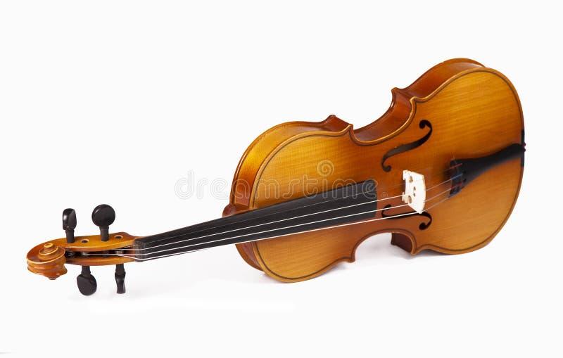 Violino classico - isolato (fondo bianco) immagine stock