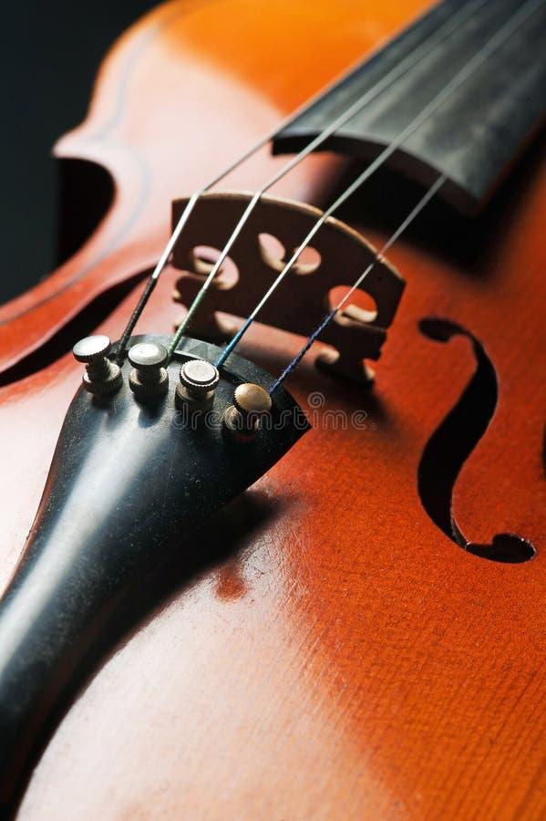 Violino (close up) imagem de stock royalty free