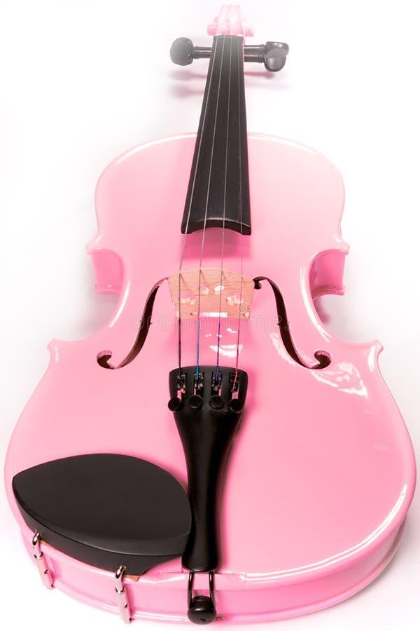 Violino cor-de-rosa cheio isolado fotos de stock