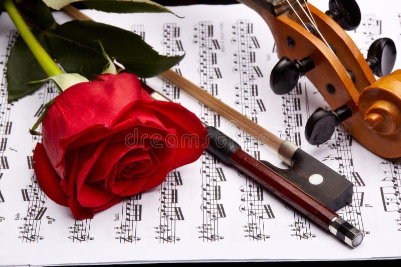 Violino, cor-de-rosa e notas fotografia de stock royalty free
