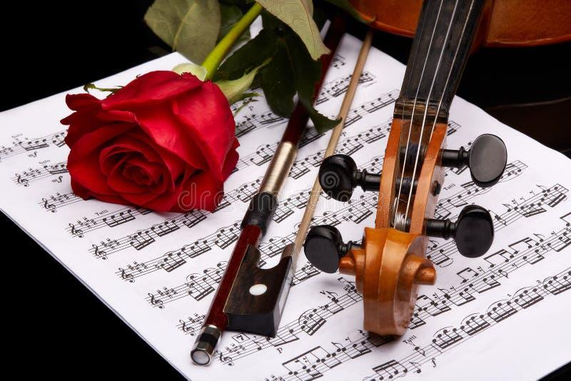 Violino, cor-de-rosa e notas foto de stock