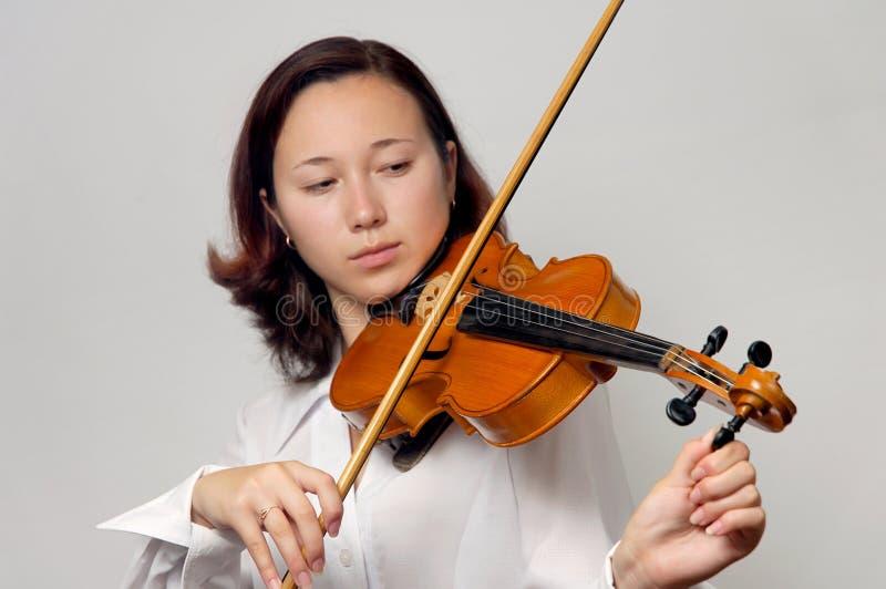 Violino de ajustamento fotos de stock