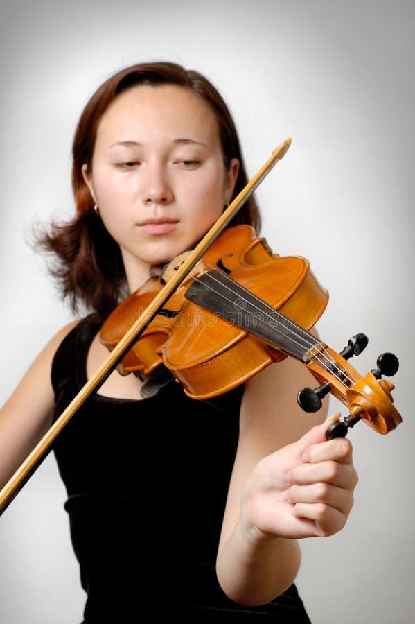Violino de ajustamento imagens de stock
