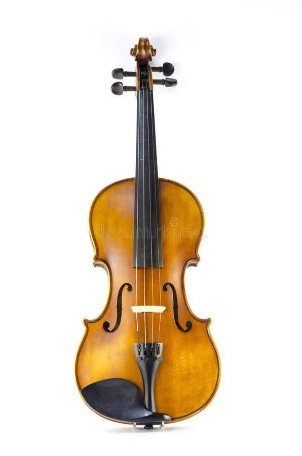 Violino do instrumento da corda da música isolado no branco fotos de stock royalty free