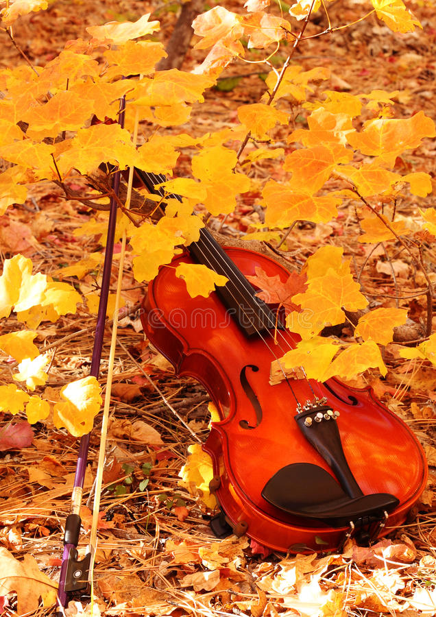 Violino e curva no outono fotografia de stock