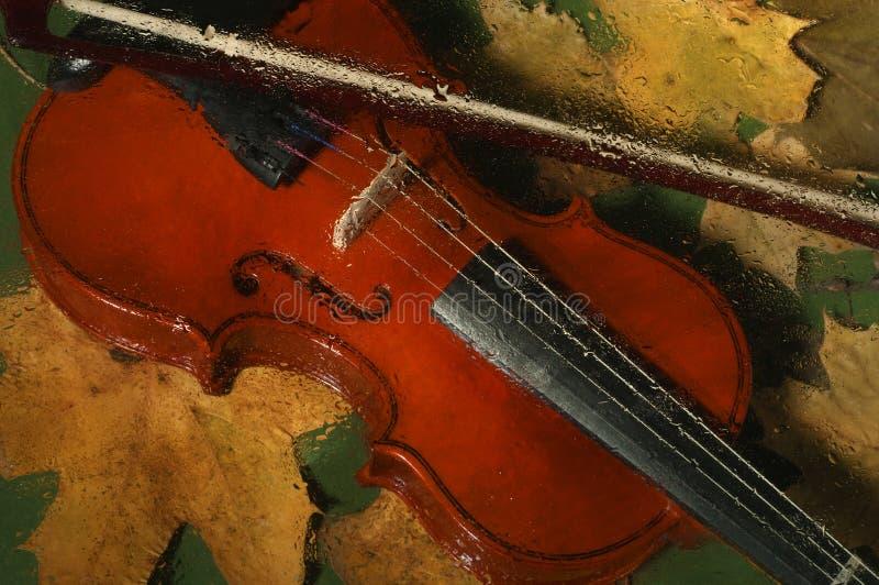 Violino e folhas de outono imagem de stock royalty free