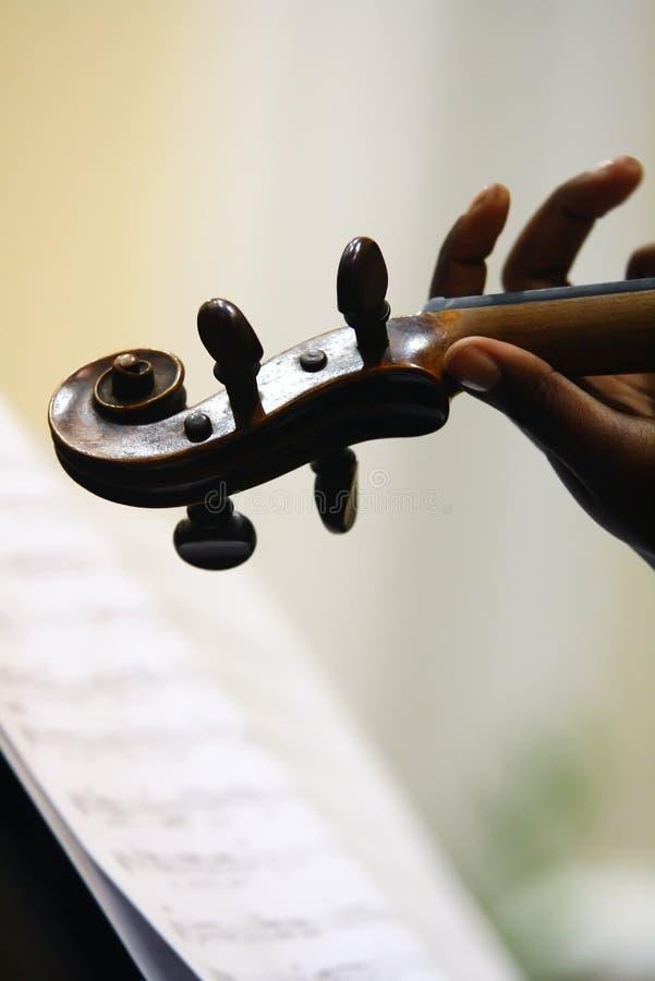 Violino e música imagem de stock royalty free