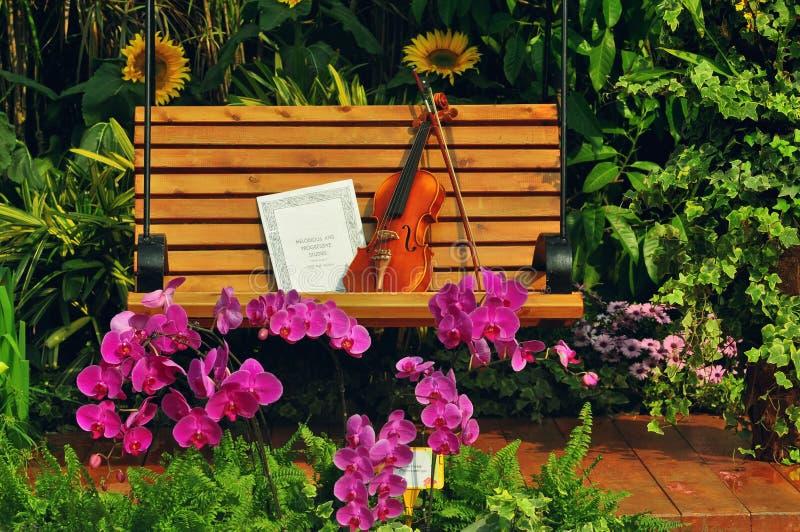 Violino e nota musical no banco imagem de stock