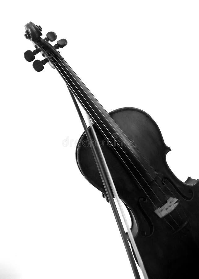 Violino em um fundo branco imagem de stock