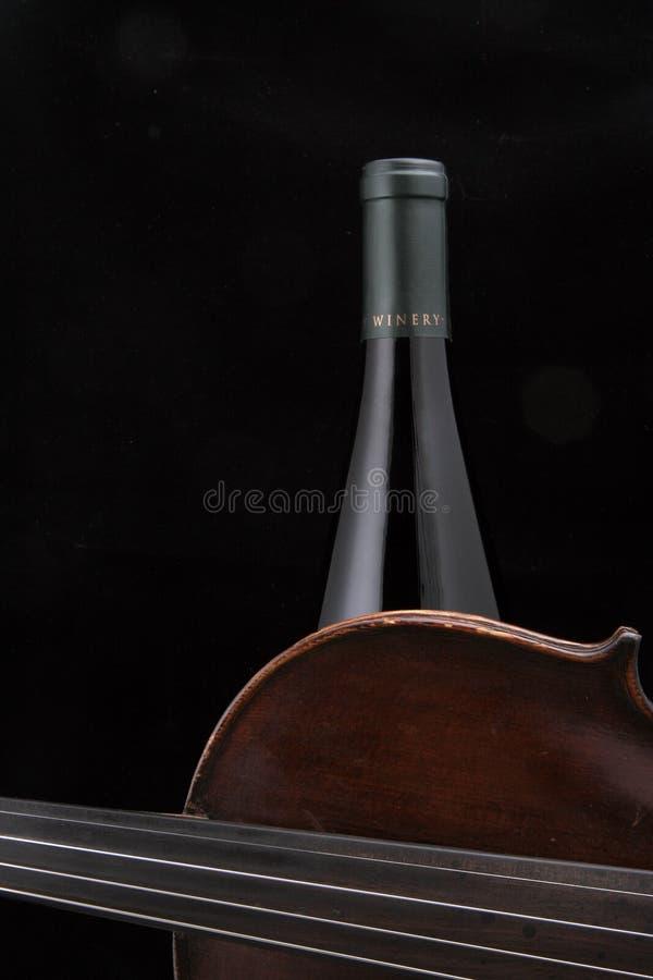 Violino escuro com frasco de vinho imagens de stock royalty free