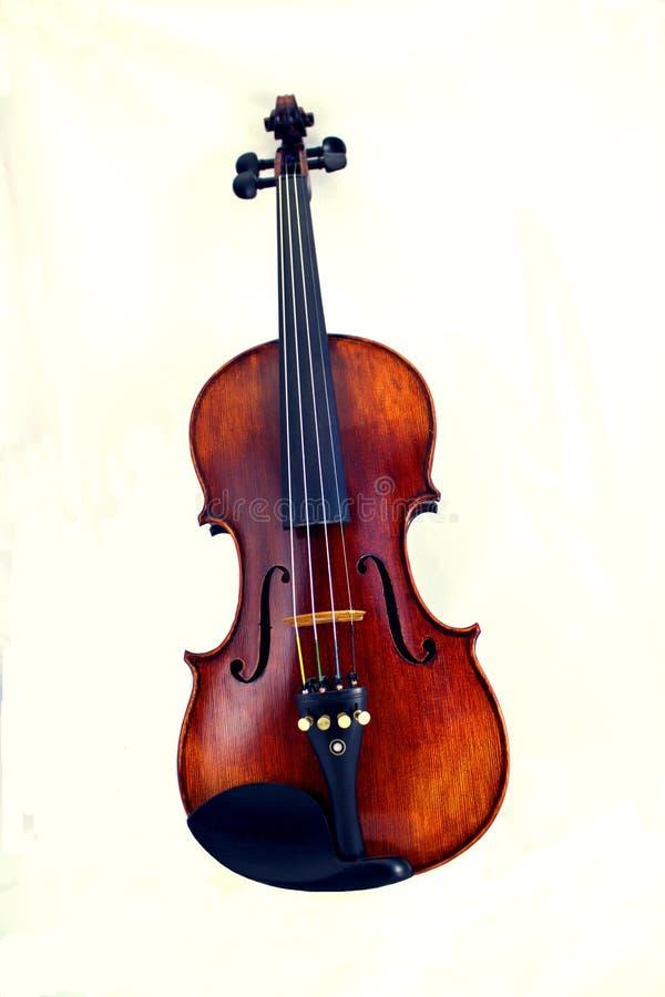 Violino isolado fotografia de stock