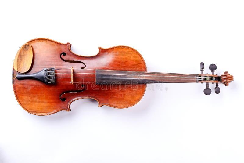 Violino isolado no fundo branco foto de stock royalty free