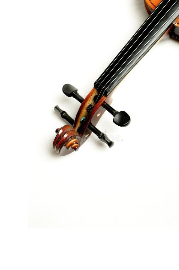 Violino lucido fotografia stock libera da diritti