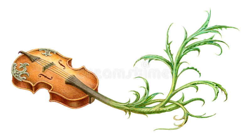 Violino místico do conto de fadas com pintura do rolo da planta isolado sobre ilustração stock