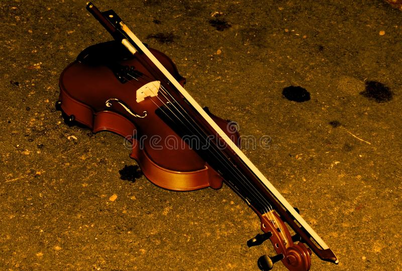 Violino nella terra fotografia stock libera da diritti