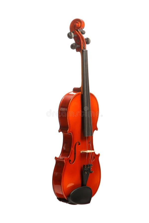 Violino su bianco fotografia stock