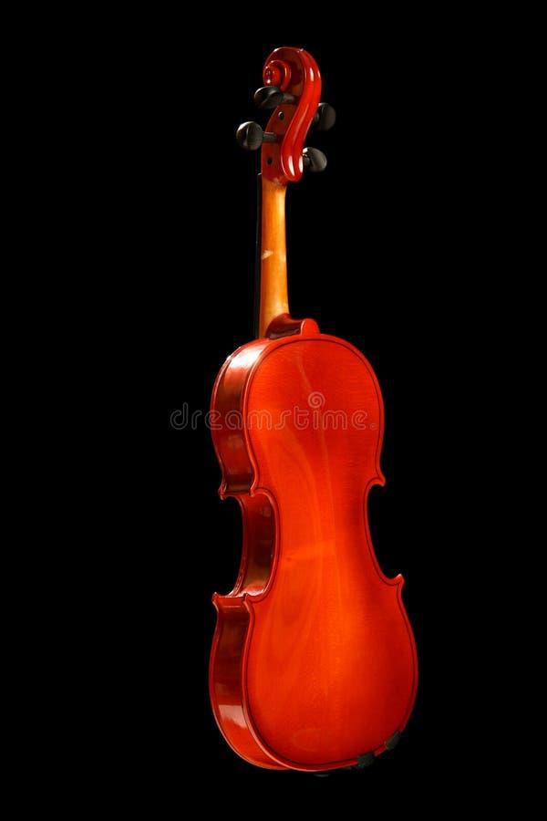 Violino sul nero fotografie stock libere da diritti